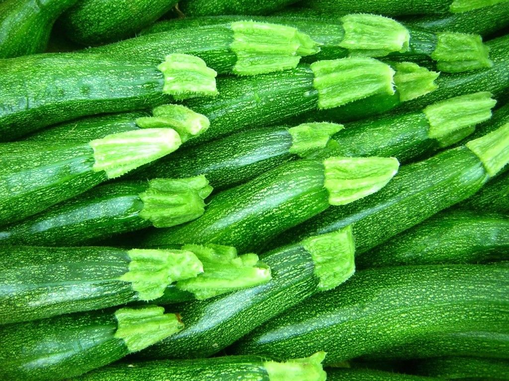 1000 images about zucchini on pinterest terry o 39 quinn. Black Bedroom Furniture Sets. Home Design Ideas